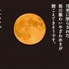秋の浮世絵お月見セットのご案内